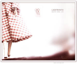 Labyrinth by recluze