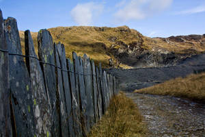 slade fence by CharmingPhotography