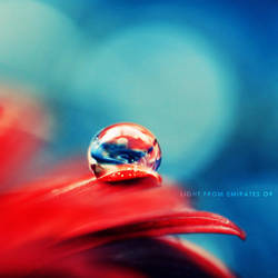 red and blue - drop . . .. by light-from-Emirates