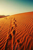 leave a trail . .. by light-from-Emirates