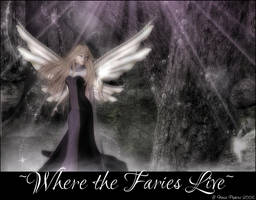 Where The Faeries Live by ReverieImages