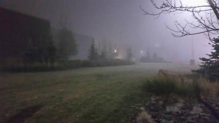 Foggy Morning 1 by Alfazil