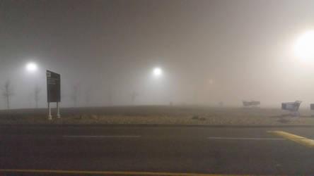 Foggy Morning 2 by Alfazil