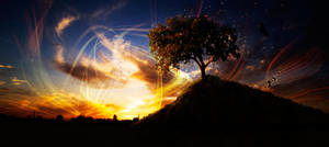 Fruits of Light by igreeny