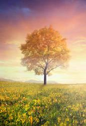tree of serenity by igreeny
