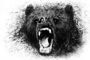 Bear1 by igreeny
