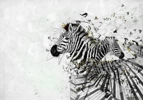 Zebra by igreeny