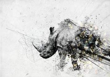 Rhino by igreeny