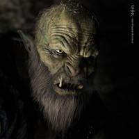 The OrkElf by warofragnarok