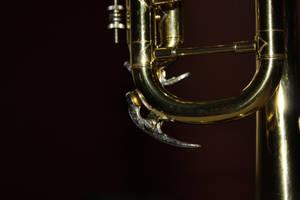 trumpet11 by PetZ-I