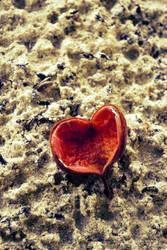 Love is everywhere by rileypluserin