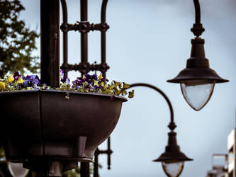 Lamps on the street by unisonart