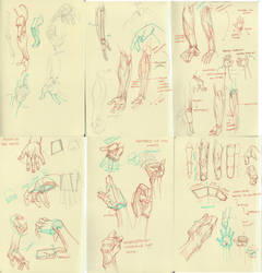 anatomy dump 4 by kakimari
