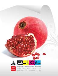 graphic design by borhani302