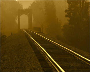 Rails by bamako