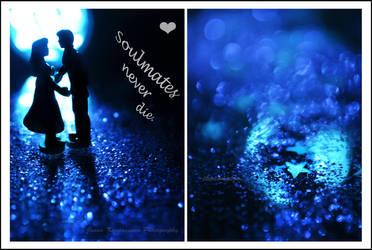 Soulmates by choconutjo