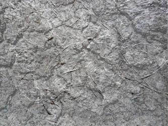 highresolution texture by alwahied