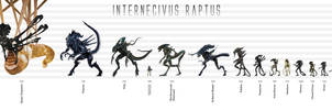 Xenomorph Size Chart by Risen-From-The-Ruins