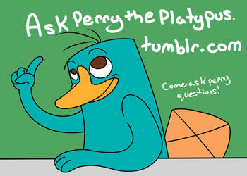 Ask Perry the Platypus by Fluffy-Moose