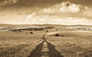 Caminos by Garconrapide