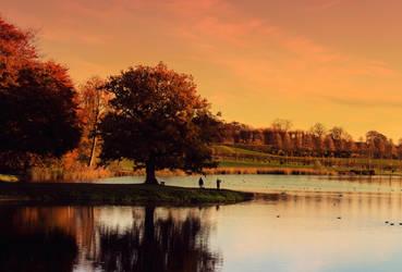 Meet Me Under The Oak Tree by FlowerRoad
