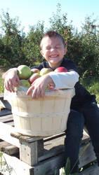 Apple Picking 2 by Blargofdoom-Stock