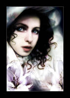 Lilium by sambees