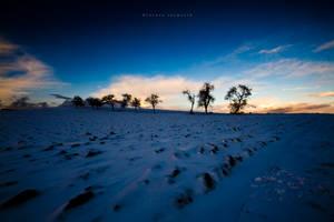 A Winter Evening by DREAMCA7CHER