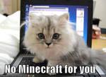 minecraft cat by Fyat66