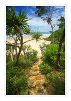 whites beach by dannyp5000