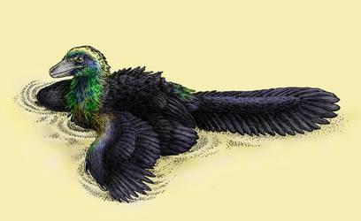Dinovember - Day 25 - Caihong juji by FOSSIL1991