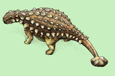 Dinovember - Day 26 - Akainacephalus johnsoni by FOSSIL1991