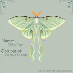 ID by Calico-Tiger