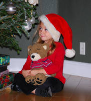 Christmas Bear 6 by SBG-CrewStock