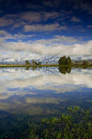 Road Side Reflections by alexwise