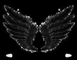 Black Wings PNG Stock by Gilgamesh-Art
