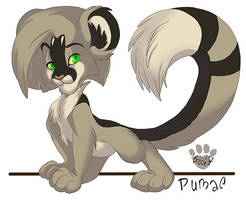 Pumae by nanook123