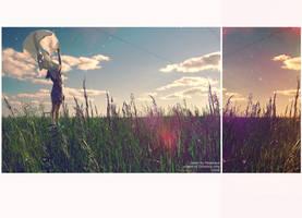 field_12 by Yuppik