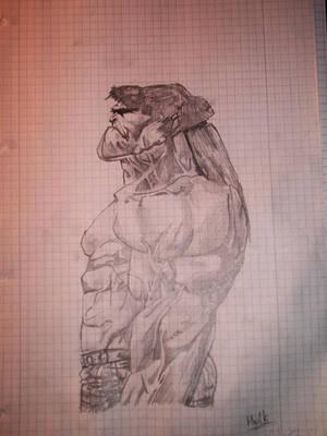 The Hulk by 2und2sind4