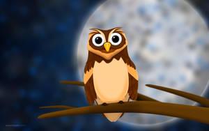 O the Owl 2560x1600 by hotamr