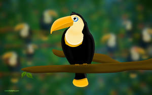 Toucan smile by hotamr