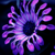 Final Fantasy Icon by Emmuls