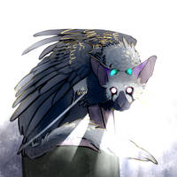 trico by Cryb4bey