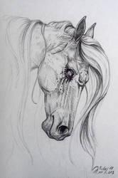 Ghost by WhiteLiesArt