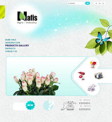 web design nafis by mirzaie