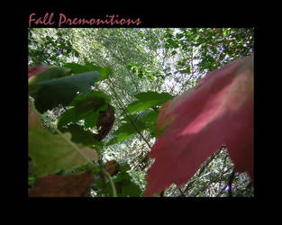 Fall Premonitions by Anatum