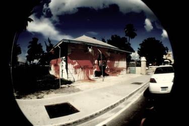 Art from the Bahamas by Bleedinheartz