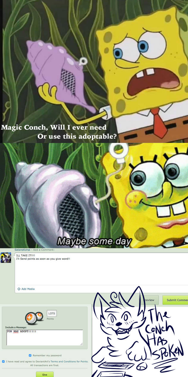 Maybe Someday Conch Shell Meme Wwwtopsimagescom