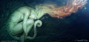 In Dreams We Belong by balaa