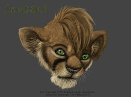 Experiment with Tablet Cougari by balaa